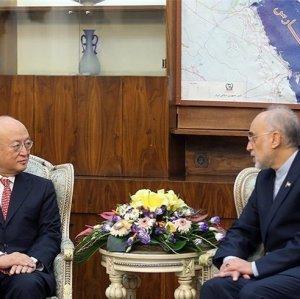 Amano: IAEA Reports Not Influenced by Politics
