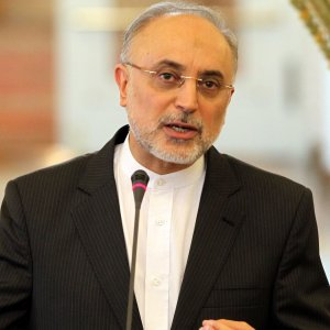 Salehi in Vienna for IAEA Confab