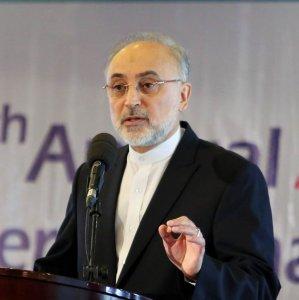 Nuclear Chief Upbeat on  Tehran-IAEA Cooperation
