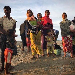 ICRC: Life Has Stopped in Myanmar's Rakhine