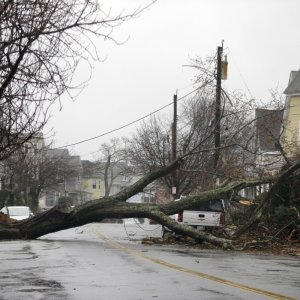 At Least 5 Dead as Storm Brings Wind, Floods, Snow to US Northeast