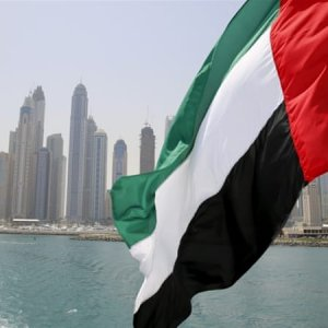 UN Paints Grim Picture of Human Rights in UAE