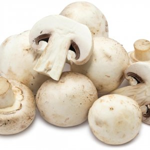 The world's edible mushroom production is estimated to be worth around $20 billion.