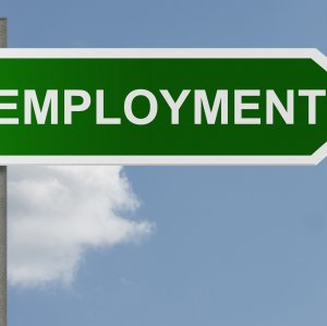 The net number of jobs created by the  government of President Hassan Rouhani  stood at 650,000 per annum.