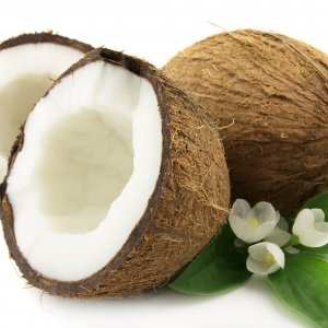 Coconut Imported From 8 Countries