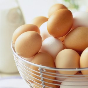 Egg Exports Hit by Bird Flu