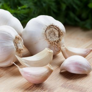 Garlic Exports Exceed $1m