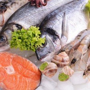 Seafood Exports Rise 37 Percent