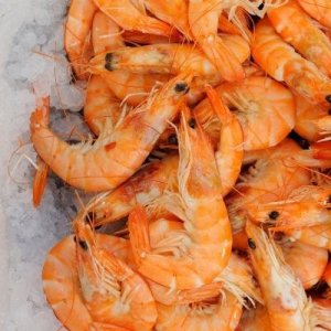 Shrimp Production, Export to Increase