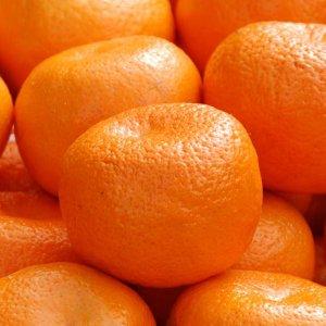 Iran Lifts Ban on Pakistani Kinnow Import