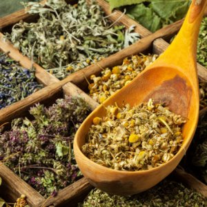 Iran's Herbal Exports Earn $91m