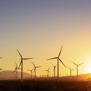 India Set to Surpass Own Renewable Goals by 2022