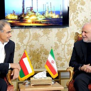 Omani Oil Minister Mohammed bin Hamad al-Rumhi (L) and Bijan Namdar Zanganeh speak in a meeting in Tehran, Feb. 7.