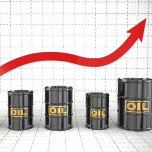 Crude Rises Above $52