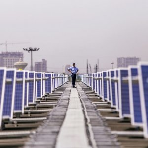 China, India Lead Solar Expansion