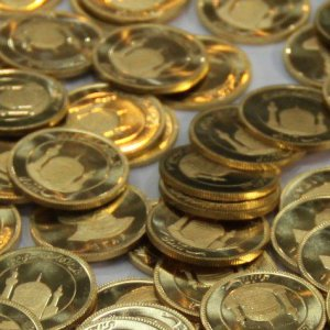 Gold Coin Drops Over Presale News