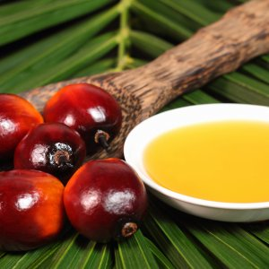 Malaysia More Than Doubles Palm Oil Exports to Iran