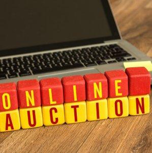 Auctions Website