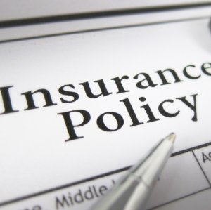 Insurance Schemes Offered to Knowledge-Based Firms
