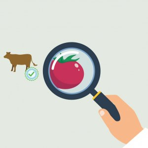 Norouz Food Safety Checks Underway
