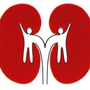 2,500 Kidney Transplants per Year