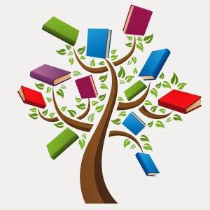 Literacy Rates Improve