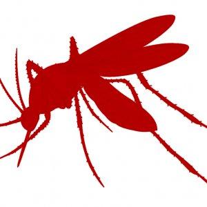 Malaria Cases Decline