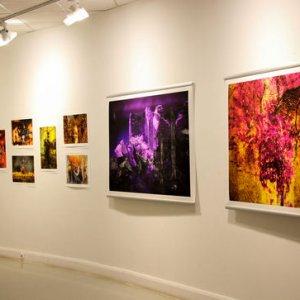 Norwegian Artist Puts Digital Works on Display