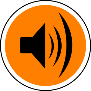 Noise Pollution Can Cause Hearing Damage