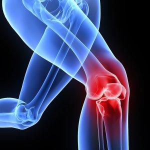 Orthopedics Conference