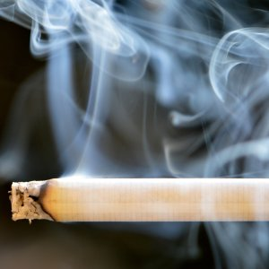 Tobacco smoke contains 4,000 chemicals of which over 40 substances have been proven to be carcinogenic for humans and animals.