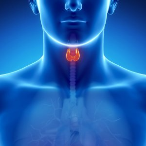 World Thyroid Day on May 25