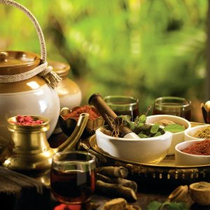 More than 1,800 domestically grown plant species are used in Iranian traditional medicine.