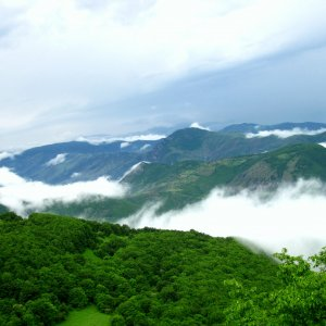 Arasbaran Forest Closer to UNESCO Heritage Listing