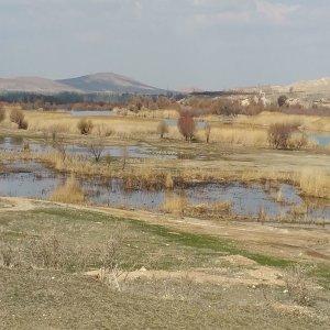 Band Alikhan Wetland Poses Dust Storm Risk to Tehran