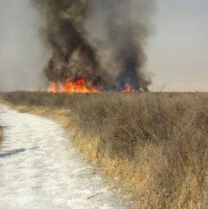 Flames Engulf Parishan Vegetation