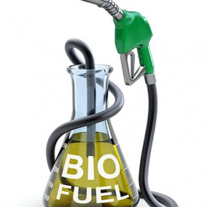 Biodiesel for Tehran Buses