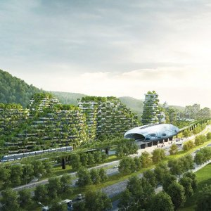 """China to Build """"Forest"""" City by 2020"""