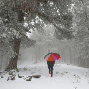 Siberian Cold Blast Ripping Through Europe