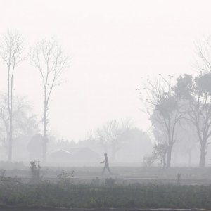 Crop stubble burning caused one-quarter of the air pollution that blanketed Delhi in November.