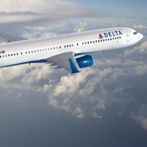 Delta Punished for Cutting Ties With Pro-Gun Group