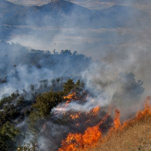 Fire Hits Northern Woodlands