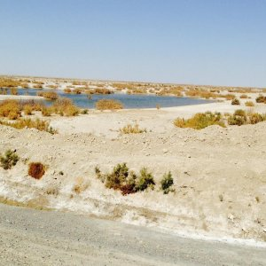 Afghanistan Destroying Hamoun Wetlands