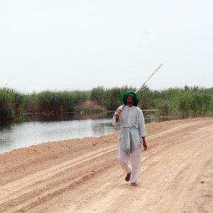 Electrofishing Threatens Hour al-Azim Wetland Biodiversity