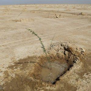 Water for Khuzestan's Anti-Desertification Schemes