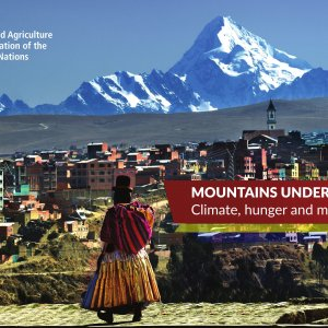 World Observes Mountain Day