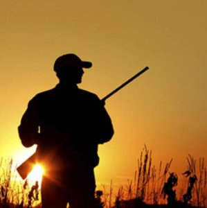 Hunting Penal Code Revised After 2 Decades