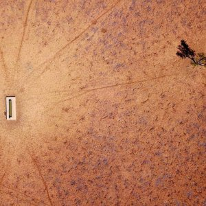 Rains Bring Relief to Australian Drought-Affected Farmers