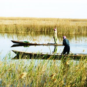 Iran must ensure 60 million cubic meters of water for the wetlands every year.
