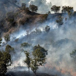 Canadian Firm Offers Firefighting Cooperation